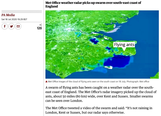 Screenshot 2020-07-18 at 21.10.18